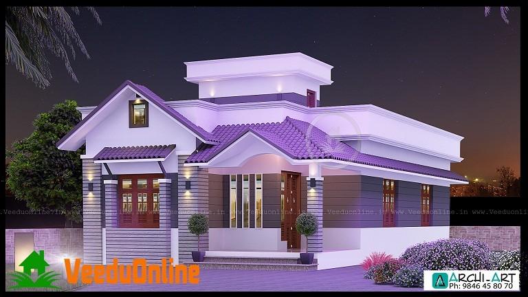 952 Sq Ft Single Floor Contemporary Home Designs